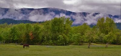 Southwest Oregon