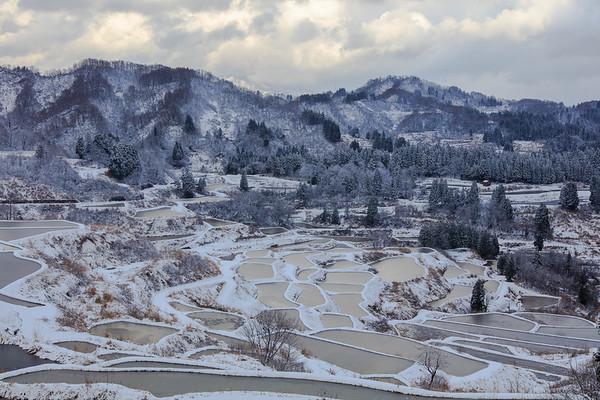 Snowy Rice Terraces Niigata, Japan
