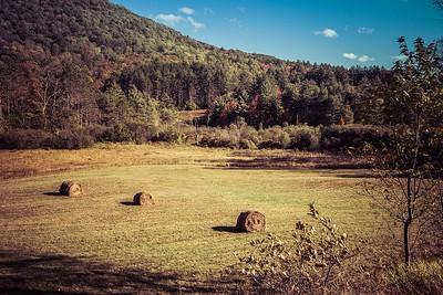 Vermont hay