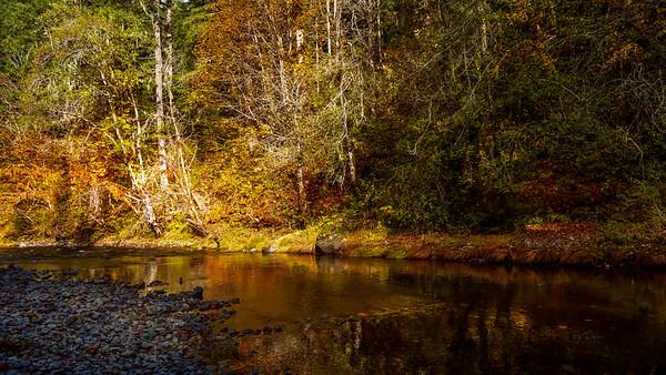 East Oregon Fall Splendor