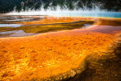 Yellowstone Grand Prismatic Spring