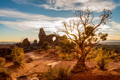 Arches National, UT