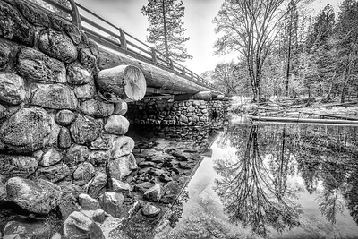 After the first snow last night the reflection in the water came out best in b/w