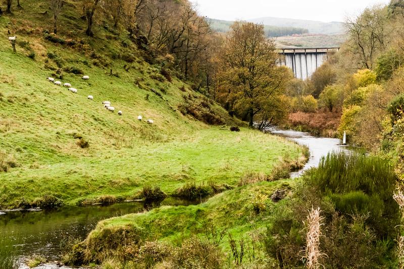 The Banks of the Devon, Scotland