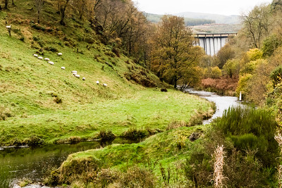 The Banks of the Devon, Scotland