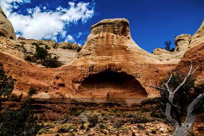 Saddle Horn Ruin
