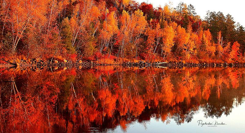 Image 31. Fall  reflection!