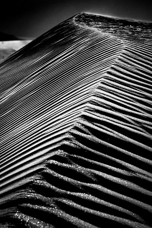 Sand dunes at sunset, east of Borrego Springs