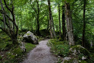Am Obersee - Berchtesgaden
