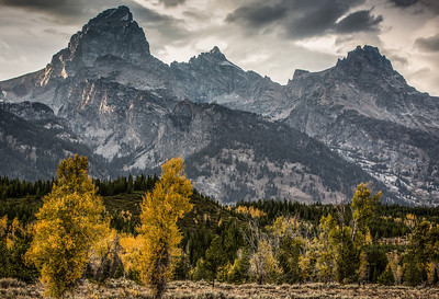 Grand Tetons - Cotton Creek