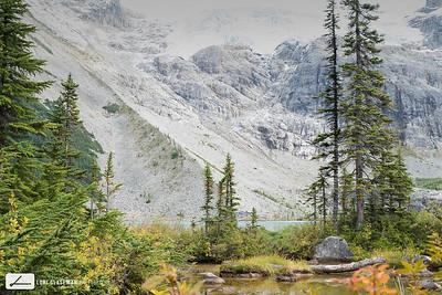 Glacier serenity
