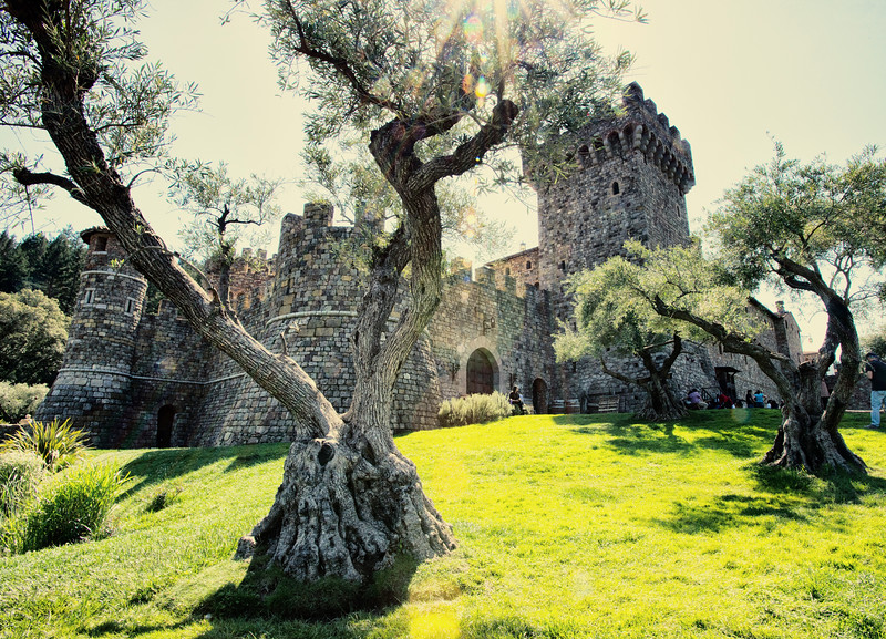 Castillo Di Amorosa