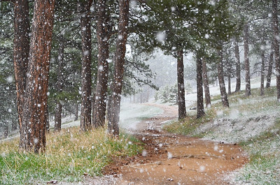 Colorado in May - you would expect warmer weather and the start of summer this late in the year, but here in Colorado the white out snowstorm is still a likely forecast.