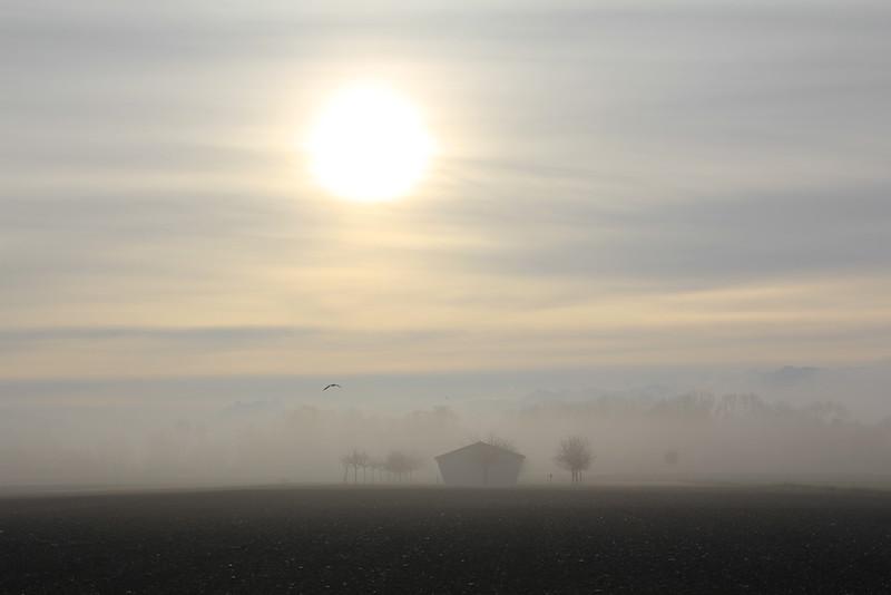 Wintermorgen, Wintemorning