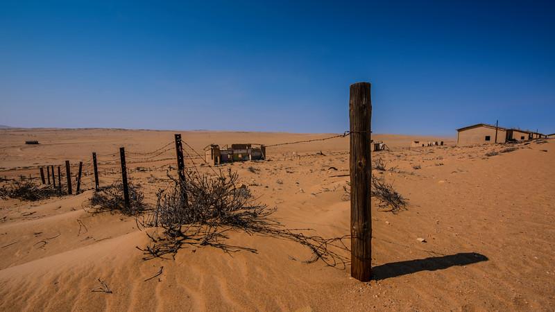 Fence in the Desert