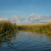 September Marsh
