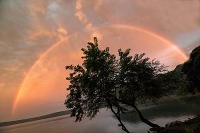 LAGUNA RAINBOW