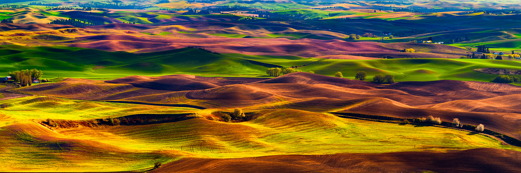 """The Hills are Alive"". Steptoe Butte... what a beautiful place to spend an evening... watching as the setting sun dances across the rolling hills beneath causing all kinds of colors and shadows to emerge. For the first time, I used my polarizering filter in this 7 shot panorama. The filter worked its magic in cutting the haze as well as helping to get some really good color saturation. I can alsmost find myself getting lost in the yellows, browns and greens of this shot."