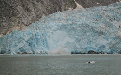 Northwestern Glacier calving for harbor seals