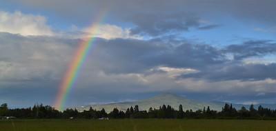 Rainbow & Roxy Ann