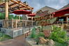 Cafe at the Dallas Zoo, Giants of the Savannah.  Client:  BRW Architects, Dallas TX