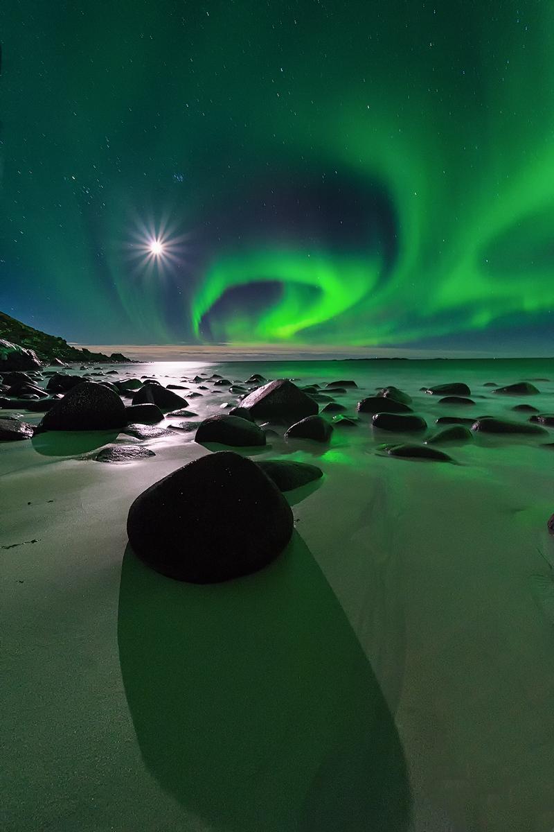 lofoten, aurora, northern lights,
