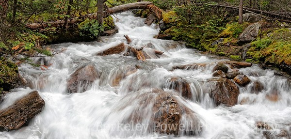 Consolation Creek Cascade