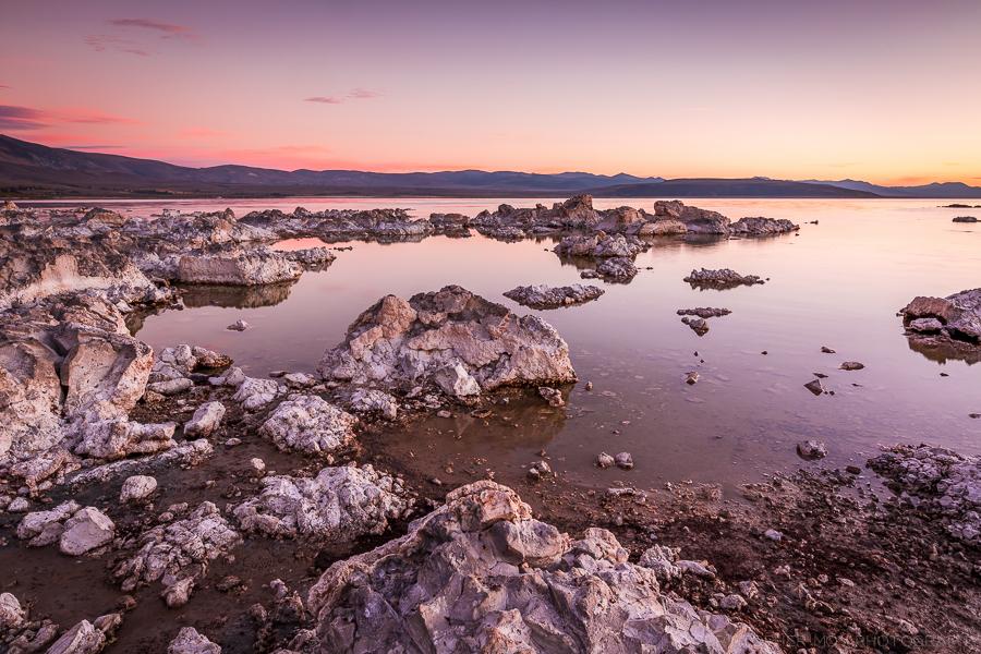 IMAGE: http://www.christophergmoy.com/Landscape/i-QFmjZdn/0/O/8F0A1609.jpg