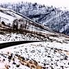 Yellowstone Park Wyoming Winter Snow