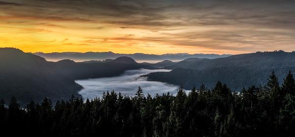 Finlayson Arm Morning Fog