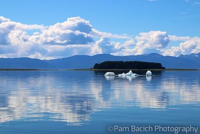 The Icebergs that Got Away