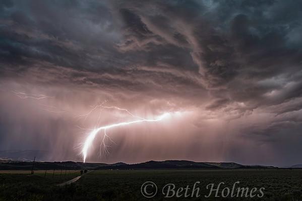Kelly Lightning Strike