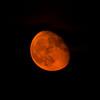 Rehoboth Moonrise