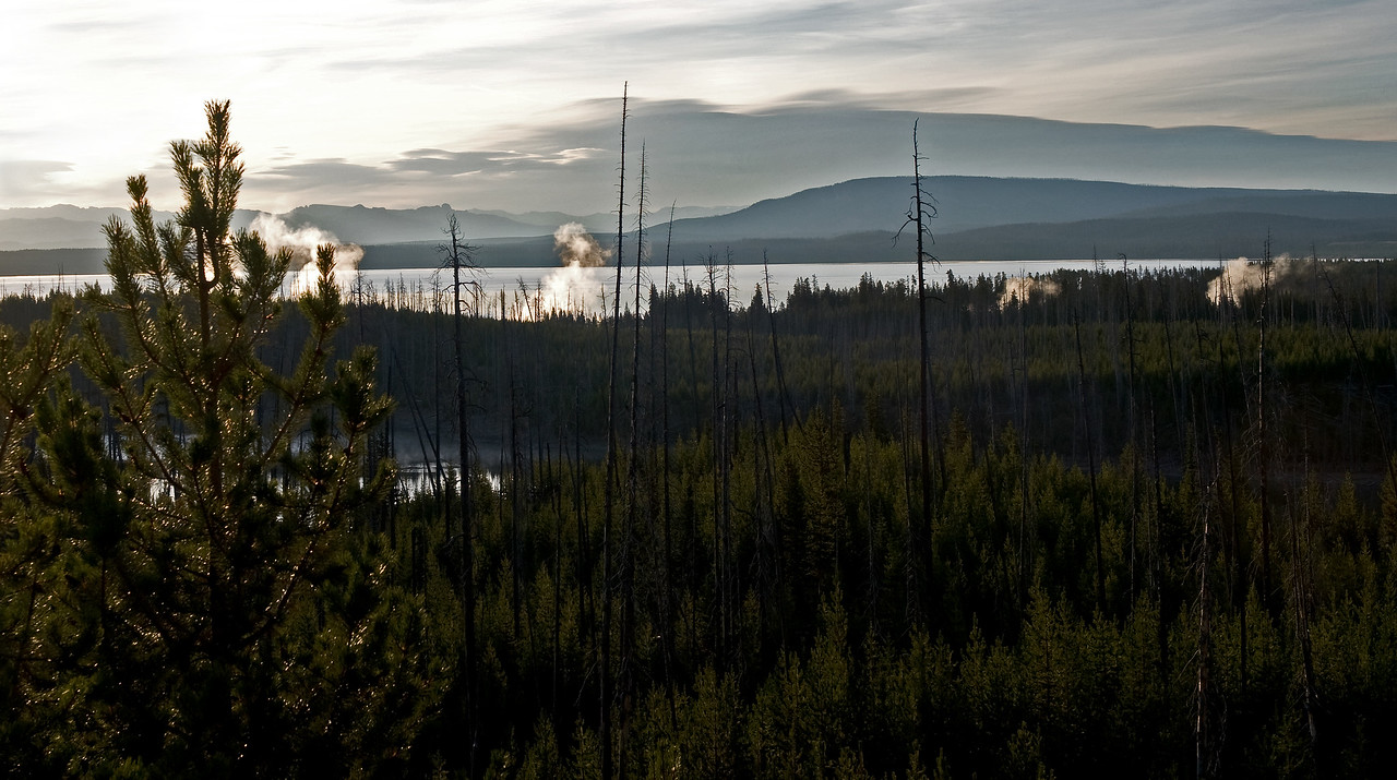 Yellowstone Park at Sunrise