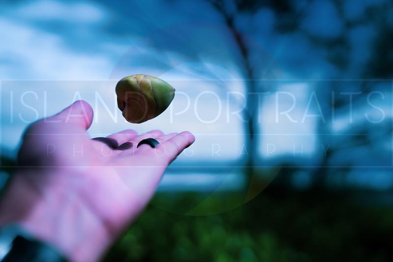 2018 Pure Kona Half (1 of 1)