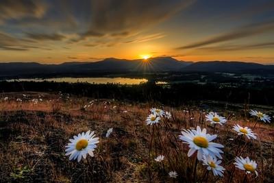 Sunrise Over Quamichan