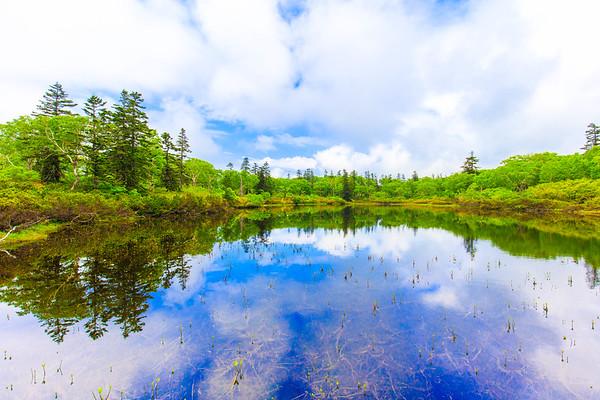 Spring, Shinsennuma Marsh, Hokkaido