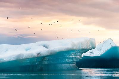 Icebergs1_NikonD850_Nikon70200