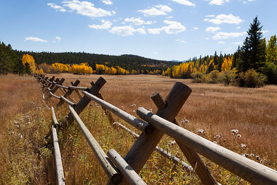 Autumn Fence Line