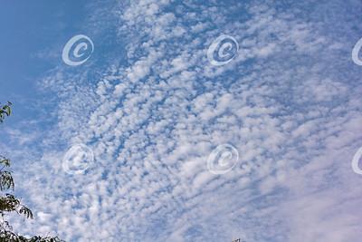 Cirrocumulus Stratiformis Clouds in a Bright Blue Sky