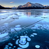 Abraham Lake Winter