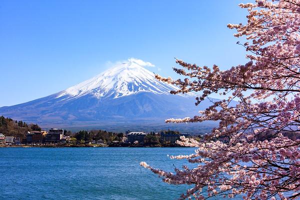 Spring Mood, Mt.Fuji
