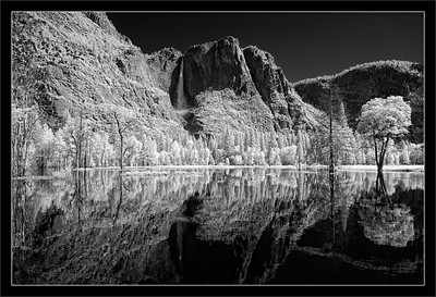 Morning on the Merced: Flood Reflections  Yosemite Falls adds to the flooding Merced River in Yosemite Valley.  Here, the Merced has flooded much of Sentinel Meadow.  Yosemite National Park, California  24-JUN-2011
