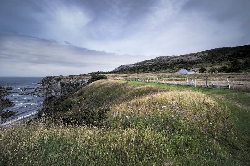 Farmland, Trout River, Newfoundland