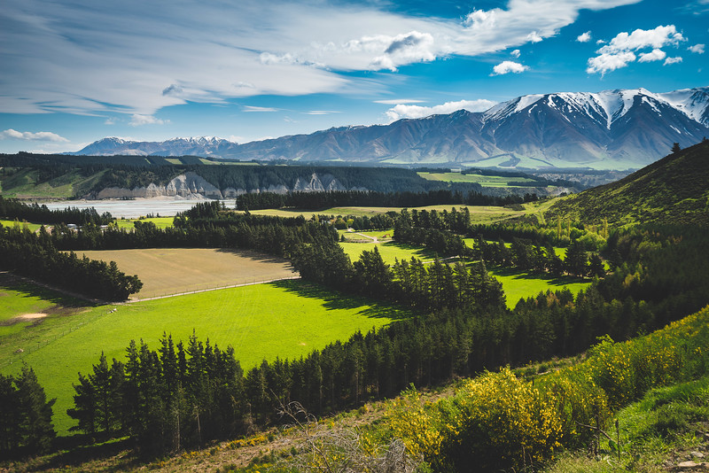 Canterbury Countryside, New Zealand