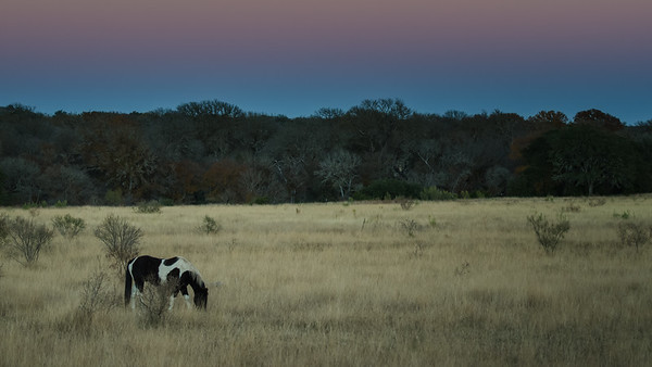Texas Hill Country Sunset #2