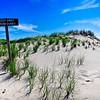 Island Dunes