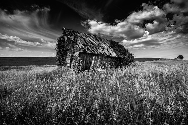 Abandoned farm house in Idaho USA. Black and white.