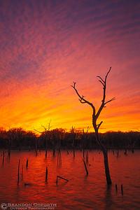 Lake Arcadia Sunset