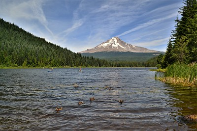 Trillium Lake Paddlers & Mt. Hood